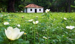 Casinha onde nasceu José de Alencar